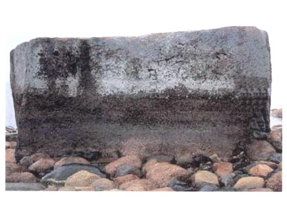 http://ps.fsb.ru/images/fpsnew/Photo-history/varashev_stone.jpg